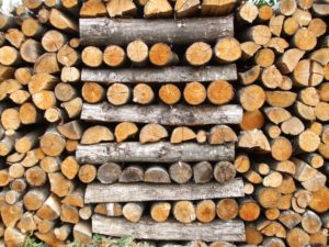 stacked firewood 300x225